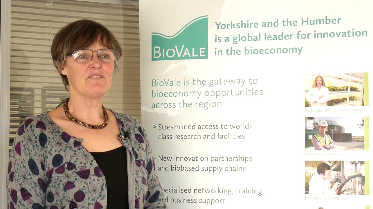 Maggie Smallwood, CEO BioVale