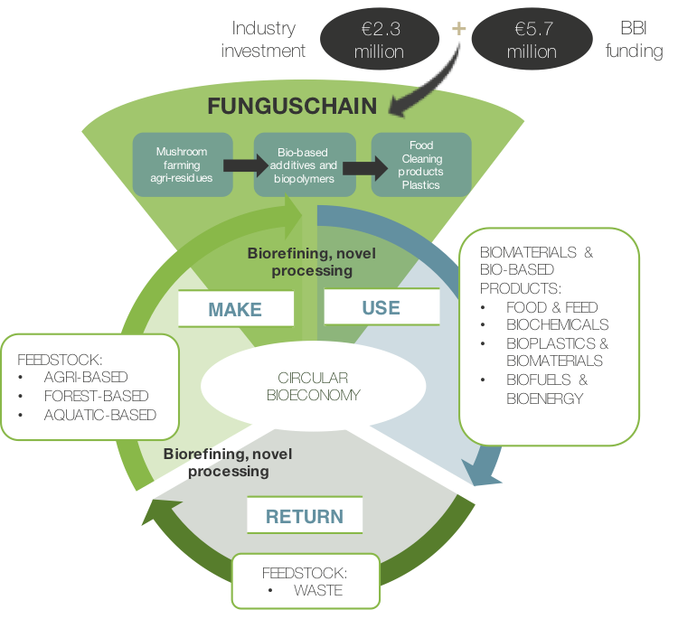 mushroom value chain Mushroom science items only  believe psk and psp are of equal value for immune  this process does release some of the protein links in the long-chain.