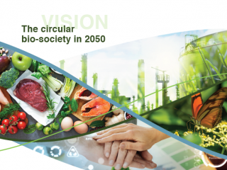 BIC and fifteen industries unite to set out their joint Vision for Europe's bioeconomy future – a  circular bio-society